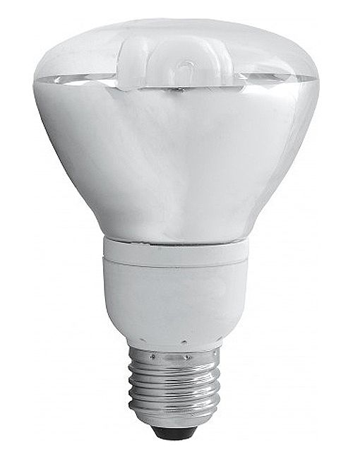 DAYLIGHT R95 REFLECTOR ENERGY SAVER LIGHT BULB (ES CAP)